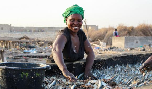 Women in the fishing industry at Joal-Fadiouth