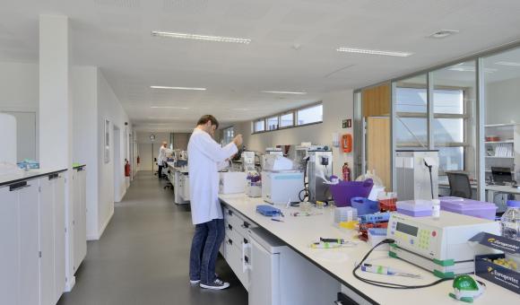 Delphi Genetics a récemment quadruplé ses capacités de production suite à une forte augmentation de la demande.