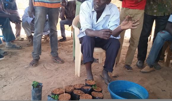 Tree growers' training - Seeding (Djibo 20-03-18)