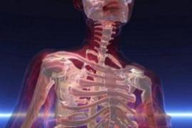 Reconstruire de l'os avec de la graisse : c'est possible !