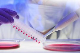 Cardio3 BioSciences : entreprise la plus innovante de Wallonie